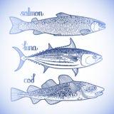Γραφική συλλογή ψαριών απεικόνιση αποθεμάτων