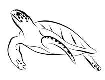 Γραφική χελώνα θάλασσας, επίπεδο ύφος, διάνυσμα στοκ φωτογραφίες