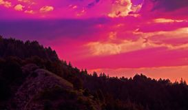 Γραφικοί ουρανός ηλιοβασιλέματος και φωτογραφία σύννεφων στο δάσος πεύκων στη βουνοπλαγιά στοκ φωτογραφίες με δικαίωμα ελεύθερης χρήσης