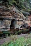 Γραφικός σχηματισμός βράχου στο δάσος κοντά στη Αγία Πετρούπολη στοκ εικόνες