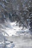 γραφικός χειμώνας ποταμών Στοκ εικόνα με δικαίωμα ελεύθερης χρήσης