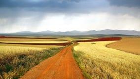 Γραφικό αγροτικό τοπίο φύσης με τους τομείς Στοκ φωτογραφία με δικαίωμα ελεύθερης χρήσης