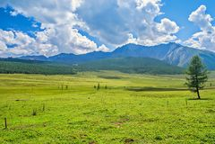 Γραφικό βουνό Altai Ρωσία τοπίων Στοκ εικόνες με δικαίωμα ελεύθερης χρήσης