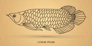 Γραφικό διάνυσμα ψαριών Arowana Στοκ Εικόνα