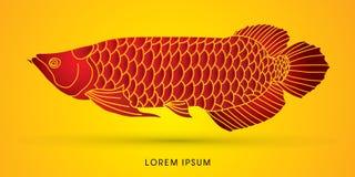 Γραφικό διάνυσμα ψαριών Arowana Στοκ φωτογραφίες με δικαίωμα ελεύθερης χρήσης