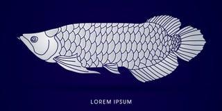 Γραφικό διάνυσμα ψαριών Arowana Στοκ Φωτογραφίες