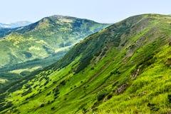 Γραφικό Καρπάθιο τοπίο βουνών το καλοκαίρι, άποψη από το ύψος, Ουκρανία Στοκ φωτογραφίες με δικαίωμα ελεύθερης χρήσης