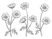 Γραφικό μαύρο απομονωμένο λευκό διάνυσμα απεικόνισης σκίτσων λουλουδιών κόσμου Στοκ Φωτογραφίες