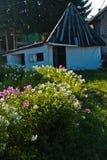Γραφικό ξύλινο σπίτι με το σύνολο κήπων των λουλουδιών σε Sjenica Στοκ Φωτογραφία