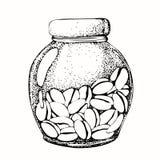 Γραφικό σχέδιο με την εικόνα ενός βάζου γυαλιού και των φασολιών καφέ Σκίτσο, γραφική παράσταση για τις τυπωμένες ύλες σχεδίου, υ διανυσματική απεικόνιση