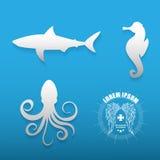 Γραφικό σύνολο διάφορων περιγραμμάτων ζώων θάλασσας διανυσματική απεικόνιση