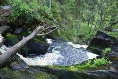 Γραφικό τοπίο με έναν καταρράκτη στο δάσος της Καρελίας Στοκ Εικόνα