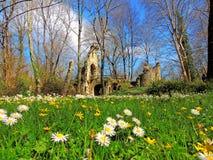 Γραφικό τοπίο με τα λουλούδια και τις αρχαίες καταστροφές Στοκ εικόνες με δικαίωμα ελεύθερης χρήσης