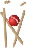 γρύλος σφαιρών wickets Στοκ Εικόνες