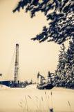Γρύλος και πλατφόρμα άντλησης πετρελαίου αντλιών που τοποθετούνται στο δάσος Στοκ Εικόνα