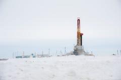 Γρύλος και πλατφόρμα άντλησης πετρελαίου αντλιών που τοποθετούνται στο δάσος Στοκ Εικόνες