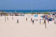 Γρύλος στην παραλία Cottesloe στοκ εικόνες με δικαίωμα ελεύθερης χρήσης
