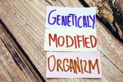 ΓΤΟ ή geneticaly τροποποιημένο organizm χειρόγραφο σημάδι στη Λευκή Βίβλο με το αναδρομικό ξύλινο υπόβαθρο Μηνύματα για την υγεία Στοκ Φωτογραφίες
