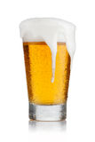 γυαλί μπύρας στοκ εικόνες με δικαίωμα ελεύθερης χρήσης