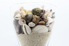 Γυαλί που γεμίζουν με τα θαλασσινά κοχύλια, τα κοράλλια και την άμμο παραλιών στο άσπρο υπόβαθρο Στοκ Εικόνα