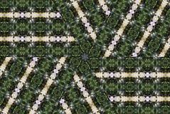 γυαλί που λεκιάζουν αφ&e Στοκ φωτογραφίες με δικαίωμα ελεύθερης χρήσης