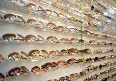 γυαλιά ηλίου ραφιών Στοκ φωτογραφίες με δικαίωμα ελεύθερης χρήσης