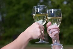 Γυαλιά και Chardonnay φρυγανιάς κρασιού υπαίθρια Στοκ Φωτογραφία