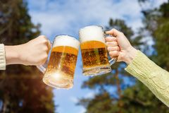 Γυαλιά μπύρας Clinking στο δασικό υπόβαθρο Στοκ φωτογραφίες με δικαίωμα ελεύθερης χρήσης