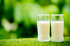 Γυαλί γάλακτος στη χλόη στοκ εικόνες με δικαίωμα ελεύθερης χρήσης