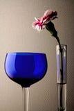 Γυαλί γαρίφαλων & κρασιού Στοκ φωτογραφία με δικαίωμα ελεύθερης χρήσης