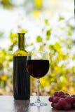 Γυαλί και μπουκάλι κόκκινου κρασιού στην ξύλινη επιφάνεια με τα κόκκινα σταφύλια Στοκ Εικόνες