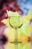Γυαλί κρασιού στο φωτεινό υπόβαθρο Στοκ φωτογραφία με δικαίωμα ελεύθερης χρήσης