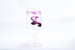 Γυαλί κρασιού colore Στοκ Φωτογραφίες