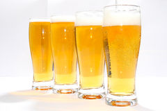 Γυαλί τεσσάρων μπύρας Στοκ φωτογραφία με δικαίωμα ελεύθερης χρήσης