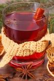 Γυαλί του θερμαμένου τυλιγμένου κρασί μαντίλι, των καρυκευμάτων και των κομψών κλάδων Στοκ εικόνες με δικαίωμα ελεύθερης χρήσης