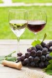 Γυαλιά άσπρου και κόκκινου κρασιού και κόκκινο σταφύλι Στοκ εικόνες με δικαίωμα ελεύθερης χρήσης