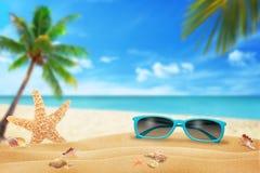 Γυαλιά ήλιων στην παραλία αστερίας κοχυλιών άμμου Παραλία και θάλασσα με το φοίνικα στο υπόβαθρο Στοκ εικόνα με δικαίωμα ελεύθερης χρήσης