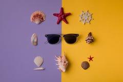 Γυαλιά ηλίου και θαλασσινά κοχύλια Στοκ Φωτογραφίες