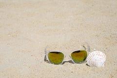Γυαλιά ηλίου και θαλασσινό κοχύλι στο υπόβαθρο άμμου παραλιών, καλοκαιρινές διακοπές Στοκ φωτογραφία με δικαίωμα ελεύθερης χρήσης
