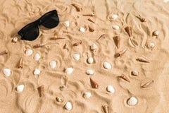 Γυαλιά ηλίου και θαλασσινό κοχύλι στο υπόβαθρο άμμου παραλιών, υπόβαθρο διακοπών καλοκαιρινών διακοπών Στοκ Εικόνα