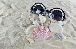 Γυαλιά ηλίου και κοχύλια στην άμμο παραλιών Στοκ Φωτογραφίες