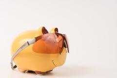 Γυαλιά ηλίου τραπεζών Piggy Στοκ Εικόνες