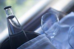 Γυαλιά και μπουκάλι νερό στον κάδο πάγου μετάλλων Στοκ Φωτογραφία