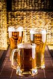 Γυαλιά μπύρας Στοκ Φωτογραφίες