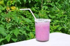 Γυαλιά του milkshake με το μύρτιλλο Στοκ φωτογραφίες με δικαίωμα ελεύθερης χρήσης