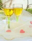 γυαλιά δύο άσπρο κρασί Στοκ Εικόνες