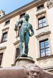 Γυμνός ξιφομάχος Στοκ εικόνες με δικαίωμα ελεύθερης χρήσης