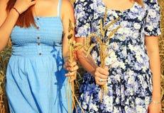 Γυναίκας στο χρυσό σίτο στοκ φωτογραφία με δικαίωμα ελεύθερης χρήσης