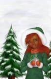 Γυναίκα αφροαμερικάνων στη χειμερινή σκηνή Στοκ Εικόνες