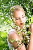 γυναίκα δέντρων λουλου& Στοκ φωτογραφία με δικαίωμα ελεύθερης χρήσης